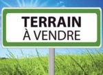 Terrain2-1_1528493518753.jpg